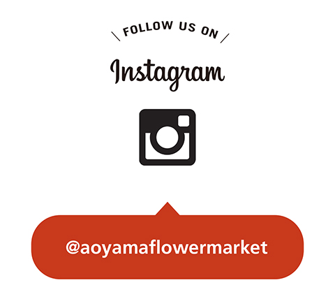 news_instagram_150625